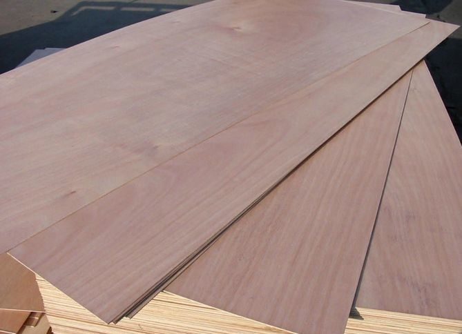 Eucalyptus Commercial Grade Plywood With Okoume Faced Standard Size